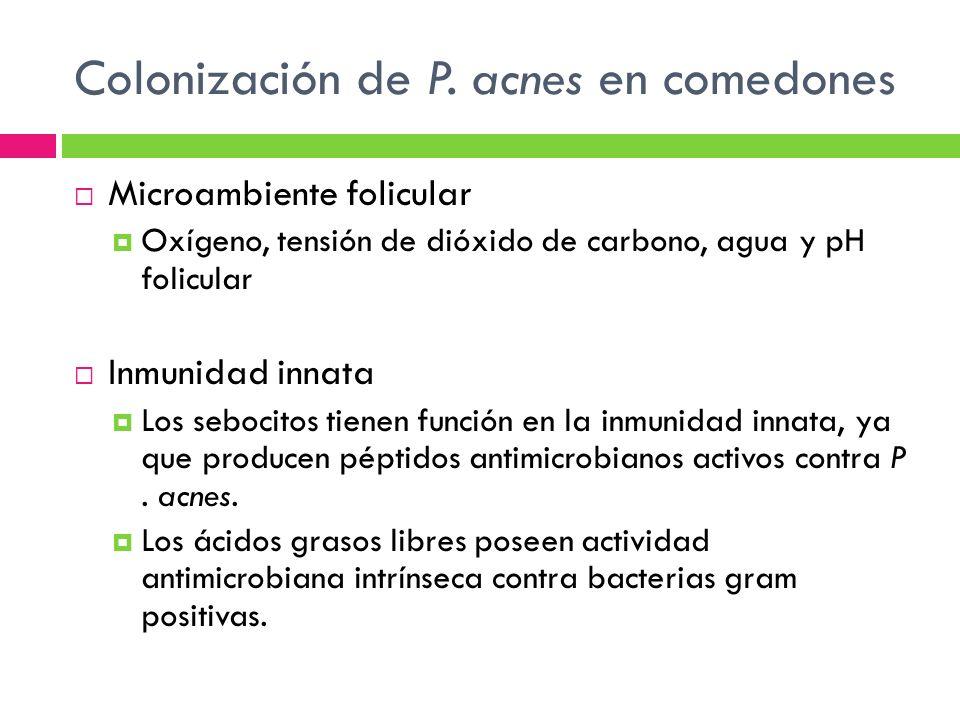Colonización de P. acnes en comedones