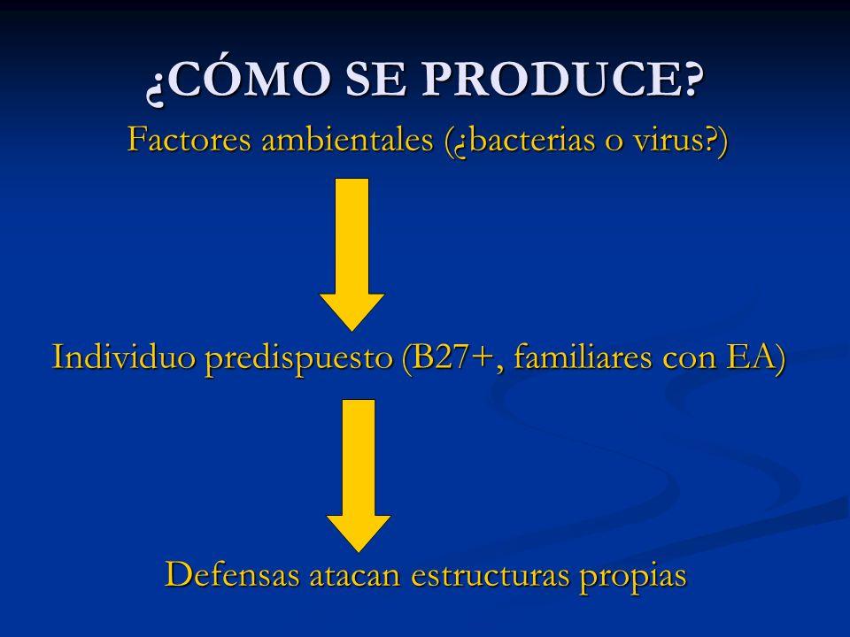 ¿CÓMO SE PRODUCE Factores ambientales (¿bacterias o virus )