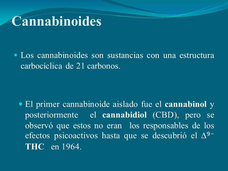 CannabinoidesLos cannabinoides son sustancias con una estructura carbocíclica de 21 carbonos.