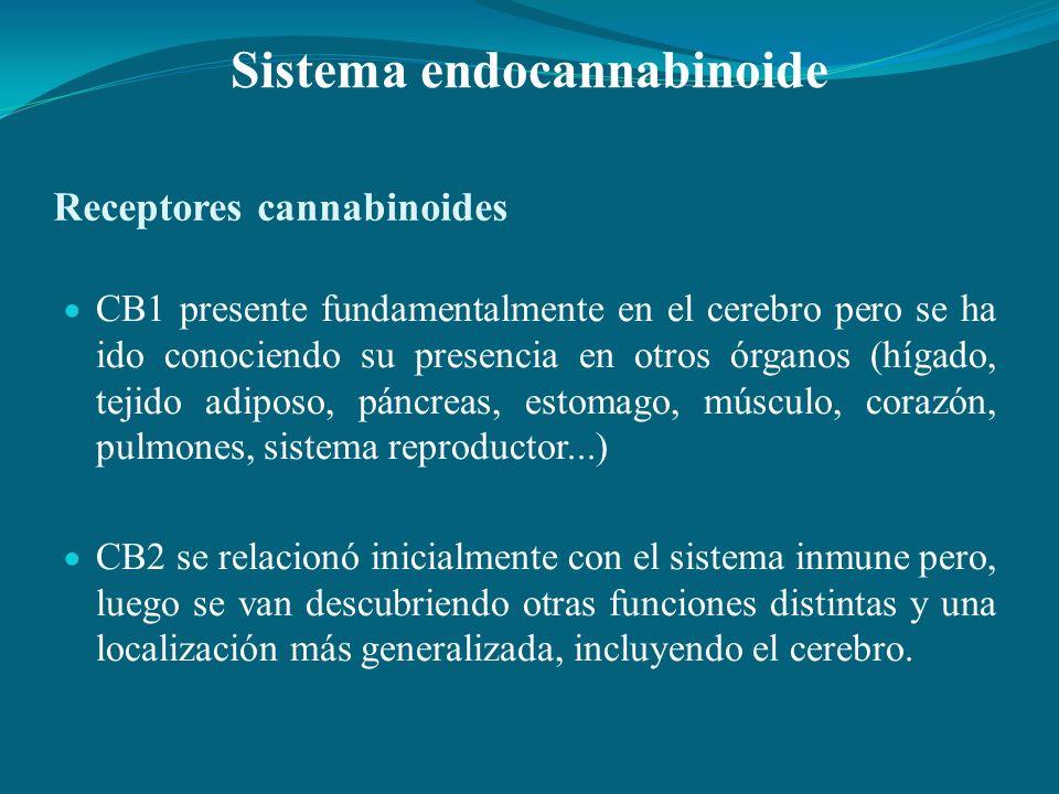 Receptores cannabinoides