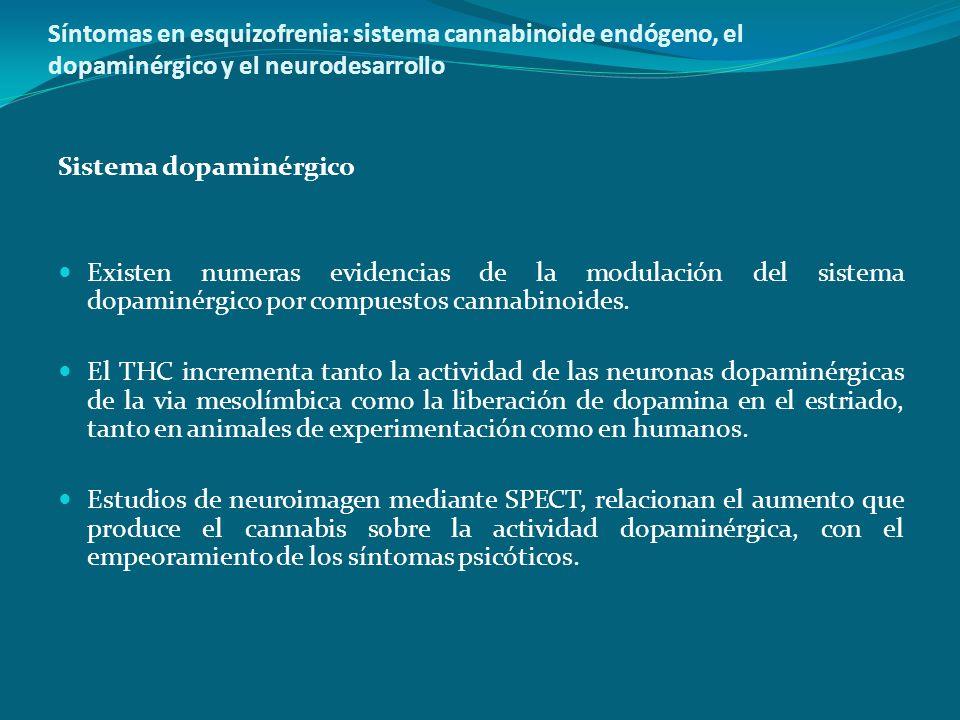 Síntomas en esquizofrenia: sistema cannabinoide endógeno, el dopaminérgico y el neurodesarrollo