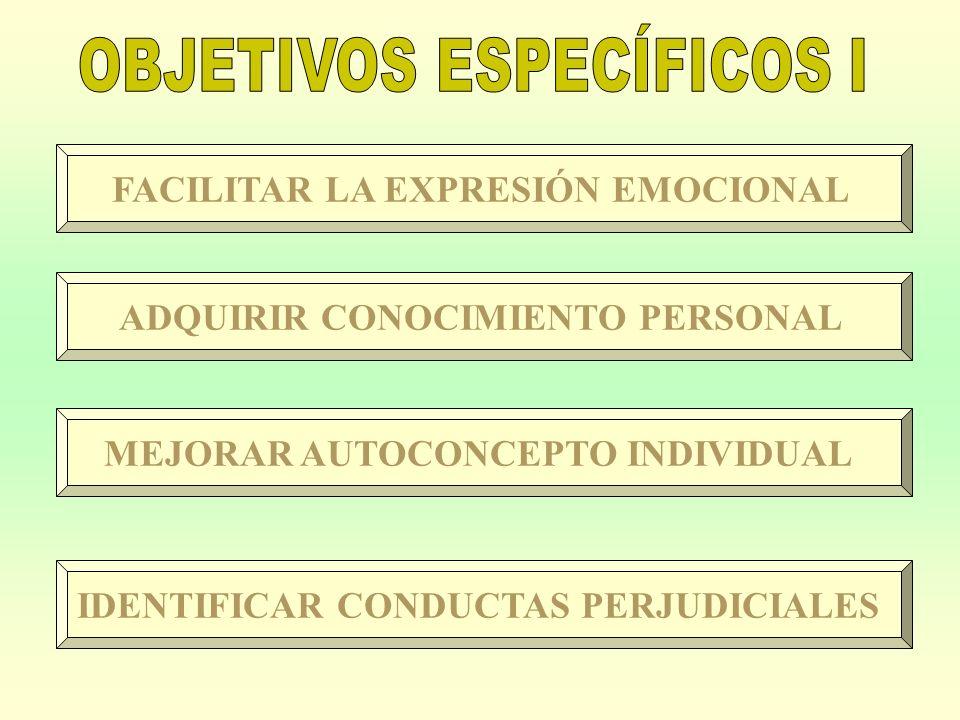 OBJETIVOS ESPECÍFICOS I