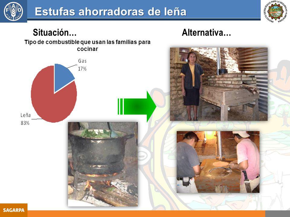Seguridad alimentaria ppt video online descargar for Estufas de lena para cocinar