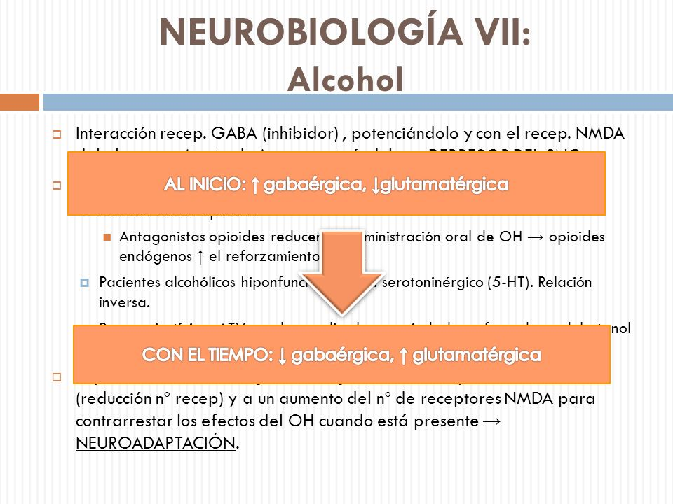 NEUROBIOLOGÍA VII: Alcohol