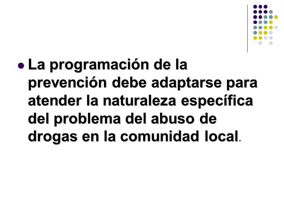 La programación de la prevención debe adaptarse para atender la naturaleza específica del problema del abuso de drogas en la comunidad local.