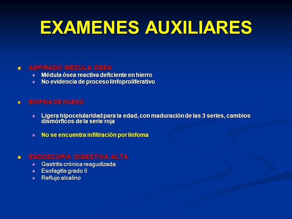 EXAMENES AUXILIARES ASPIRADO MEDULA ÓSEA ENDOSCOPÍA DIGESTIVA ALTA