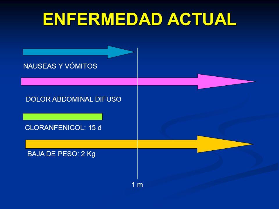 ENFERMEDAD ACTUAL NAUSEAS Y VÓMITOS DOLOR ABDOMINAL DIFUSO