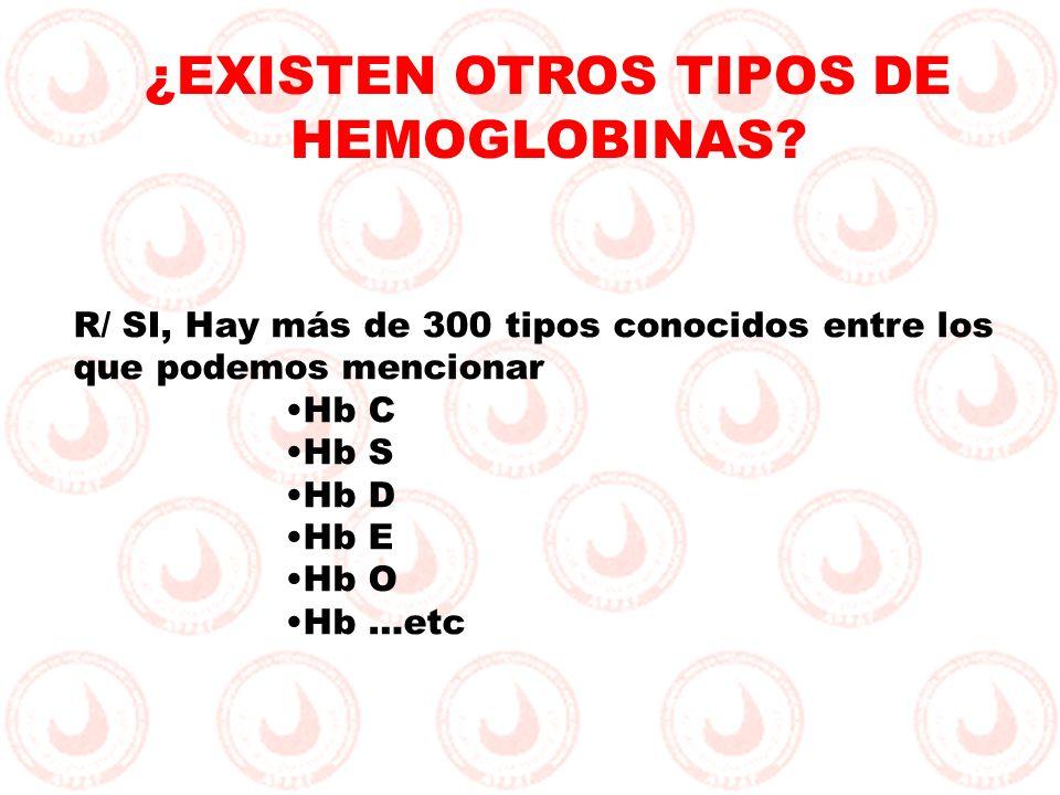 ¿EXISTEN OTROS TIPOS DE HEMOGLOBINAS