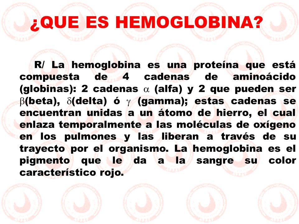 ¿QUE ES HEMOGLOBINA