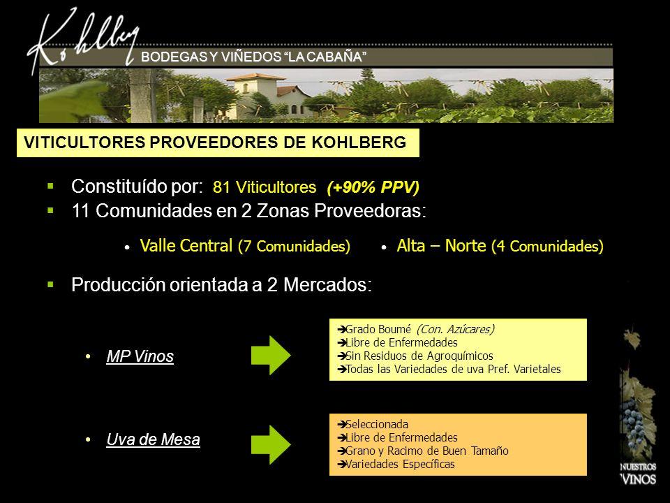 Constituído por: 81 Viticultores (+90% PPV)