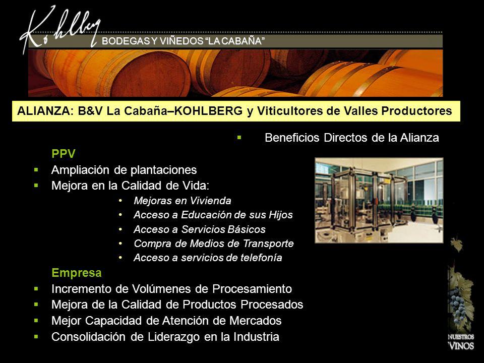 ALIANZA: B&V La Cabaña–KOHLBERG y Viticultores de Valles Productores