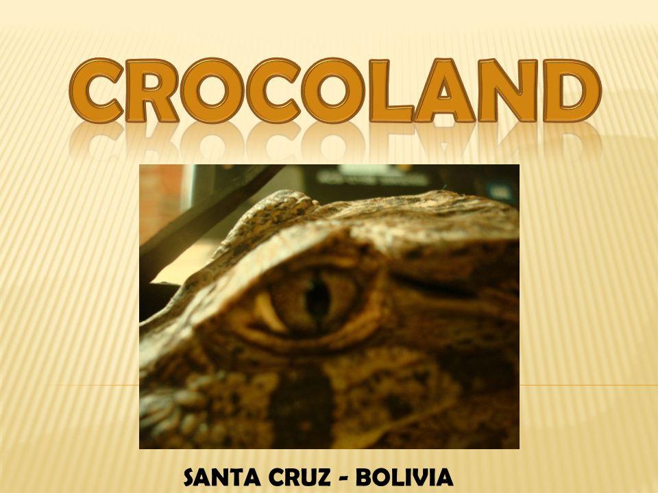 CROCOLAND SANTA CRUZ - BOLIVIA