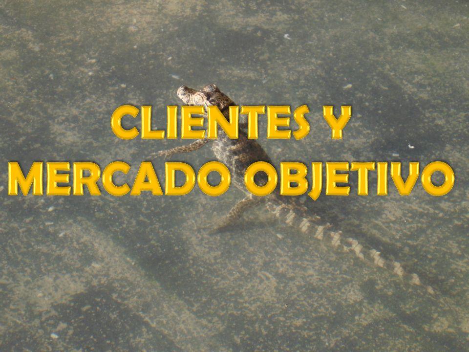 CLIENTES Y MERCADO OBJETIVO