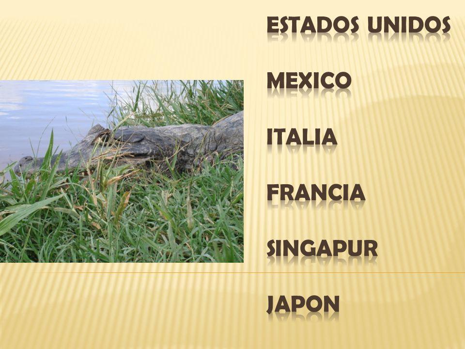 ESTADOS UNIDOS MEXICO ITALIA FRANCIA SINGAPUR JAPON
