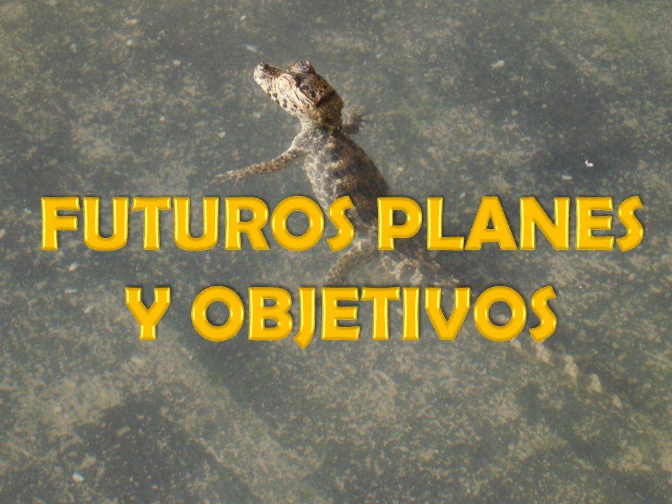 FUTUROS PLANES Y OBJETIVOS
