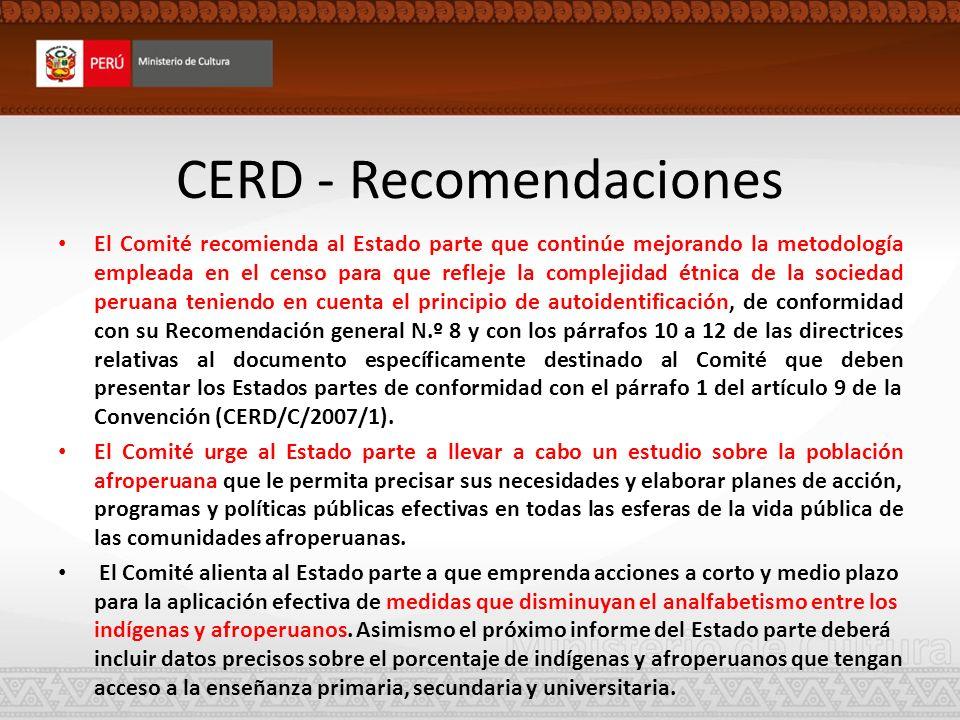 CERD - Recomendaciones