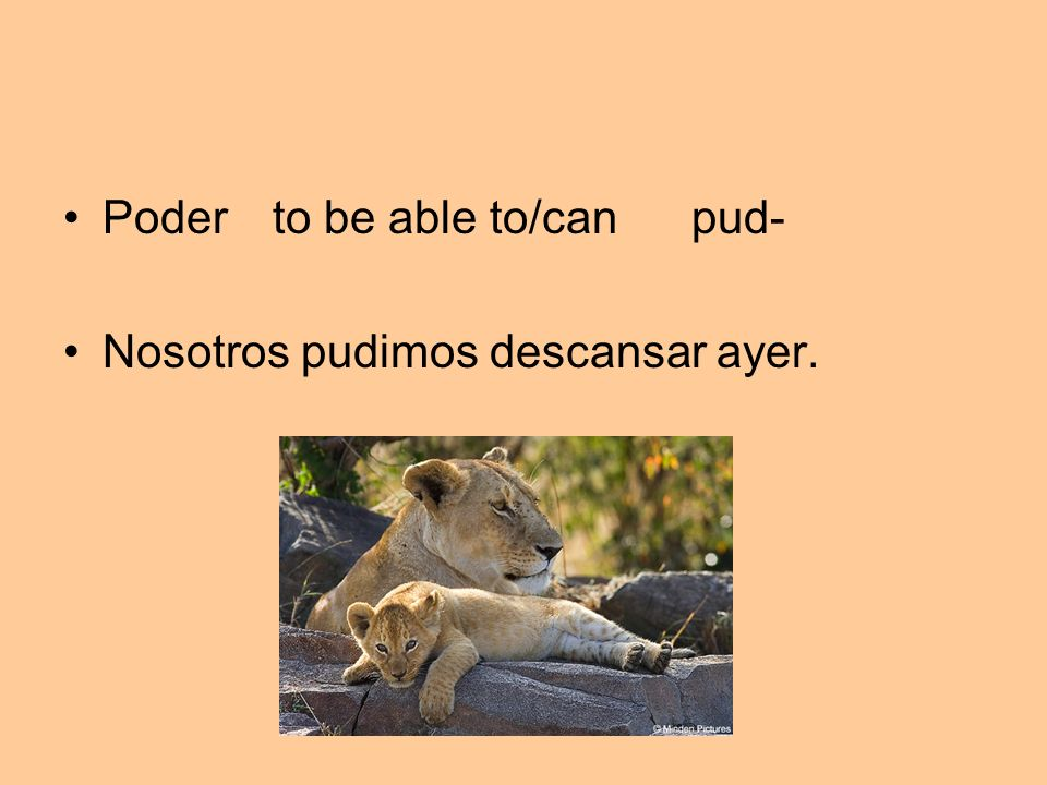 Poder to be able to/can pud-