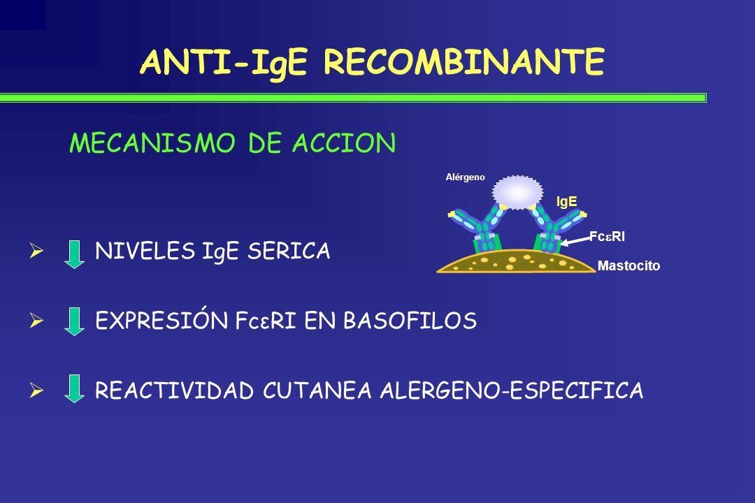ANTI-IgE RECOMBINANTE