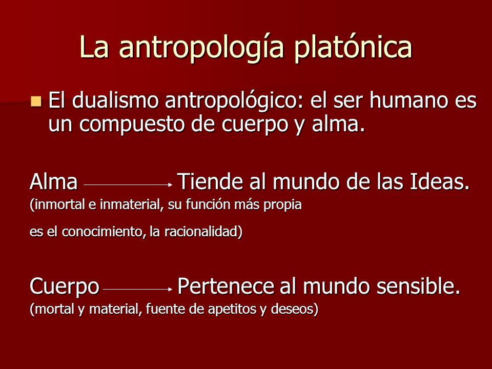 La antropología platónica