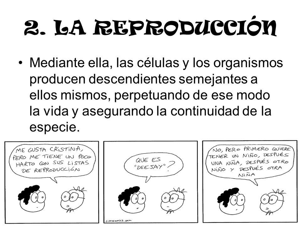 2. LA REPRODUCCIÓN