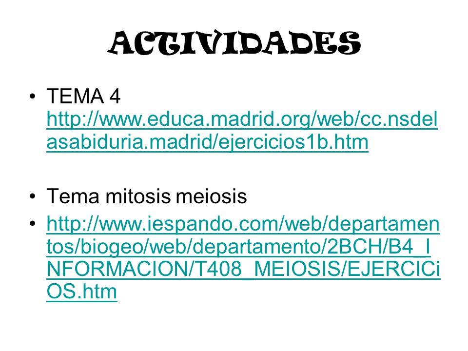 ACTIVIDADESTEMA 4 http://www.educa.madrid.org/web/cc.nsdelasabiduria.madrid/ejercicios1b.htm. Tema mitosis meiosis.