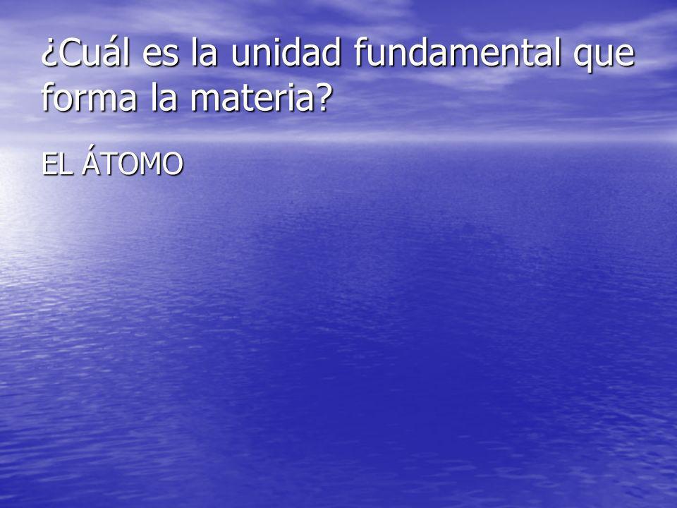 ¿Cuál es la unidad fundamental que forma la materia