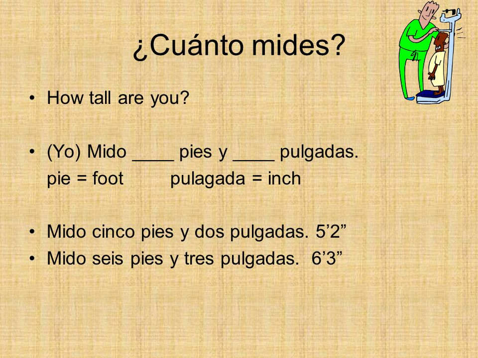 ¿Cuánto mides How tall are you (Yo) Mido ____ pies y ____ pulgadas.