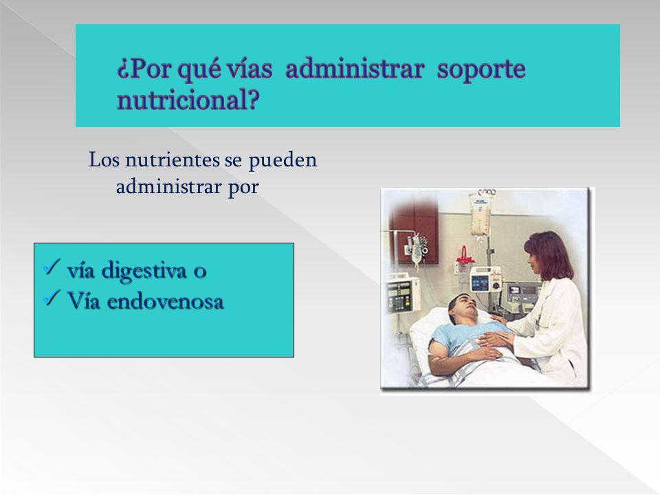 ¿Por qué vías administrar soporte nutricional