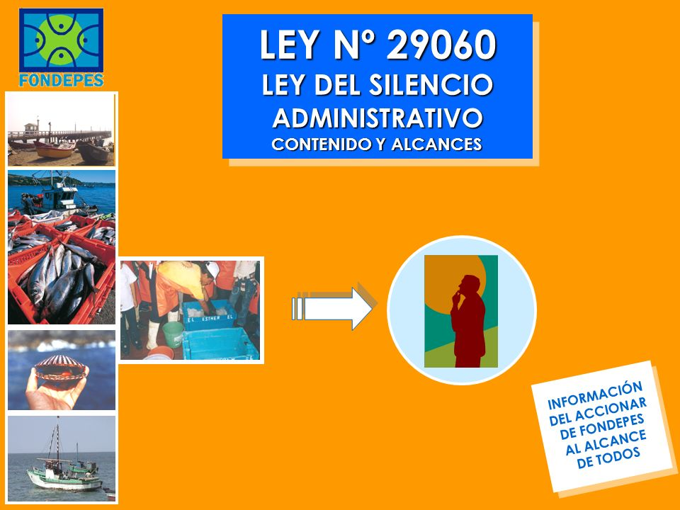 LEY Nº 29060 LEY DEL SILENCIO ADMINISTRATIVO CONTENIDO Y ALCANCES