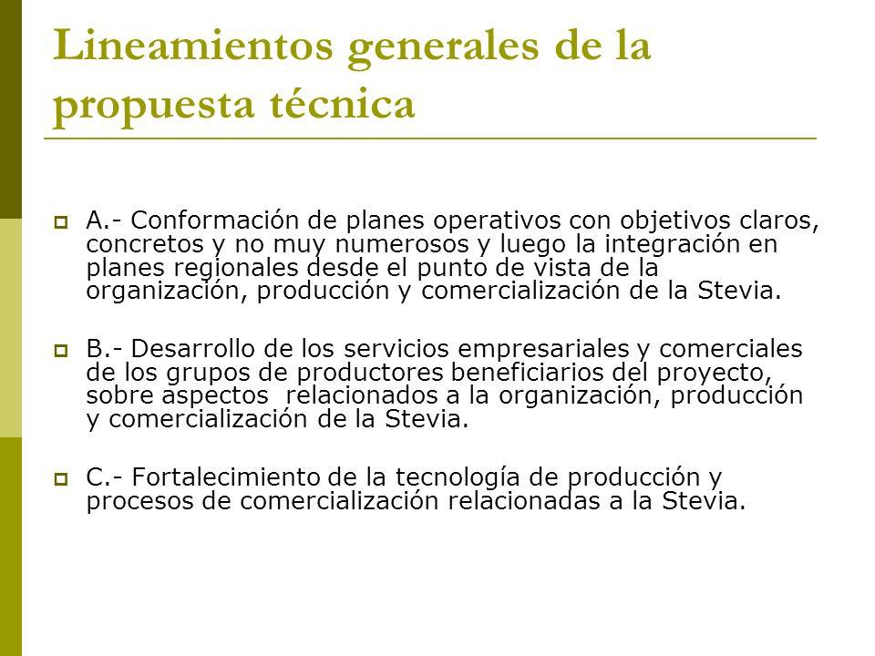 Lineamientos generales de la propuesta técnica