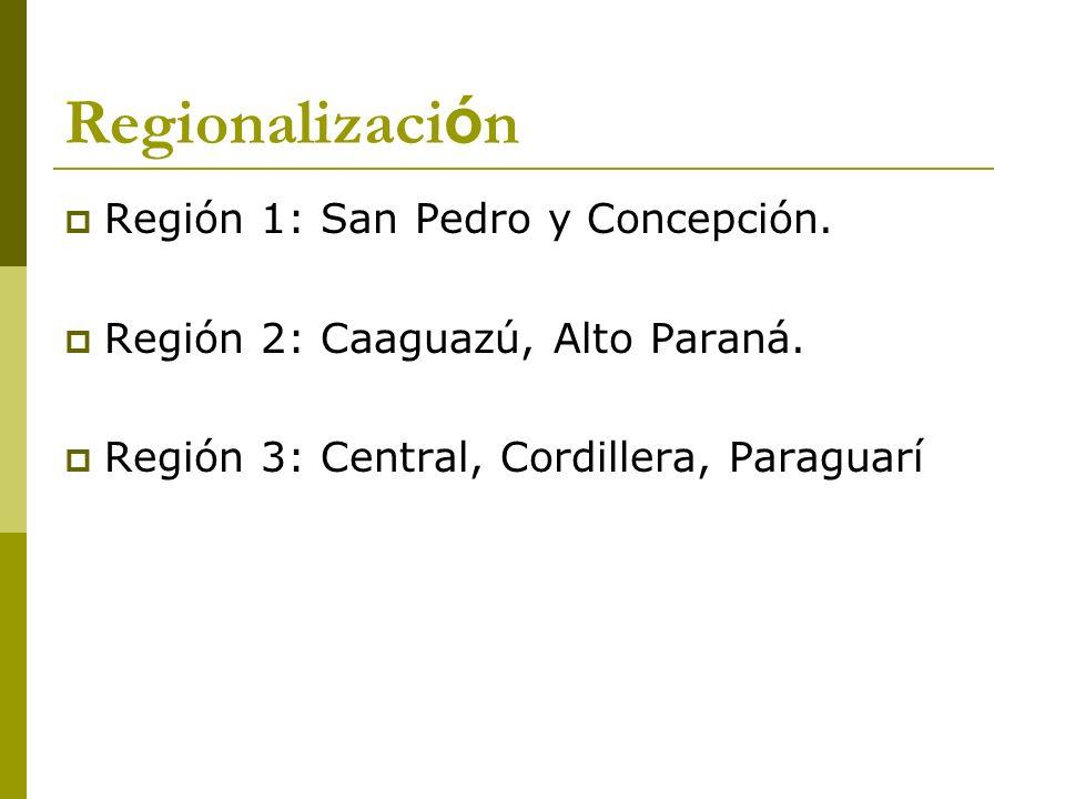 Regionalización Región 1: San Pedro y Concepción.