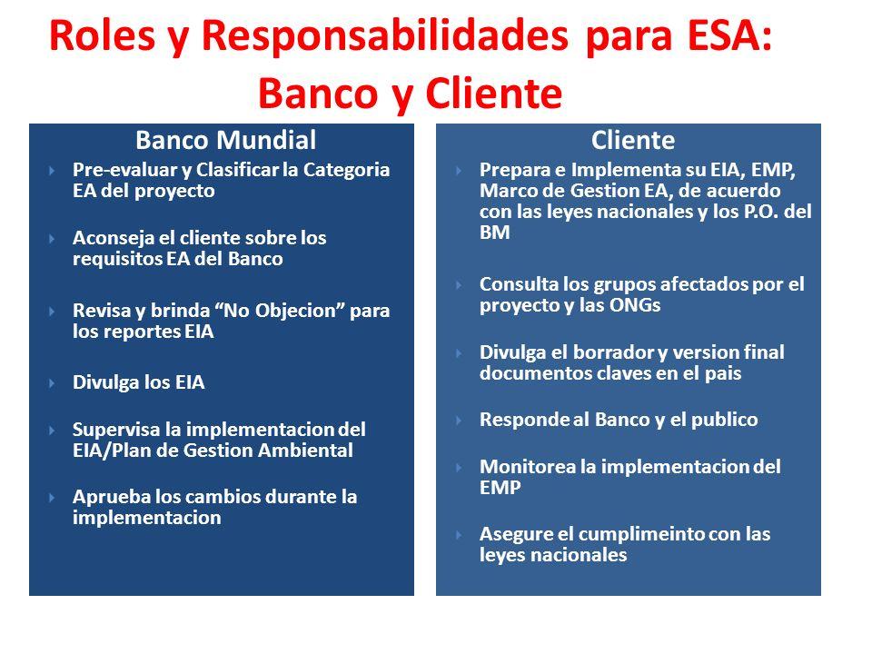Roles y Responsabilidades para ESA: Banco y Cliente