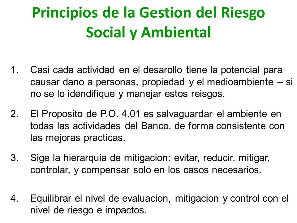 Principios de la Gestion del Riesgo Social y Ambiental