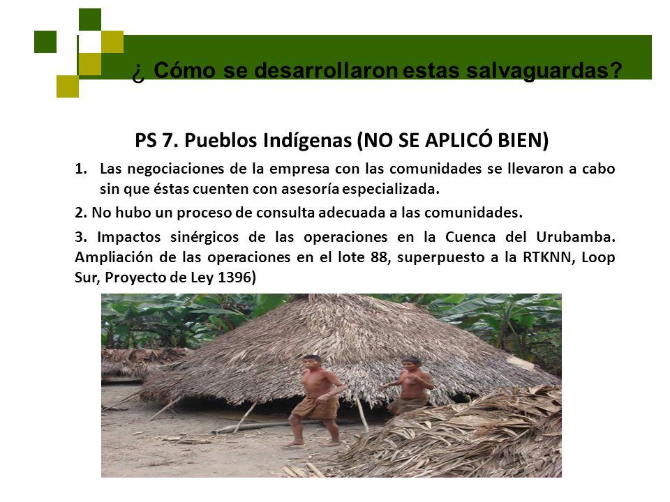 PS 7. Pueblos Indígenas (NO SE APLICÓ BIEN)