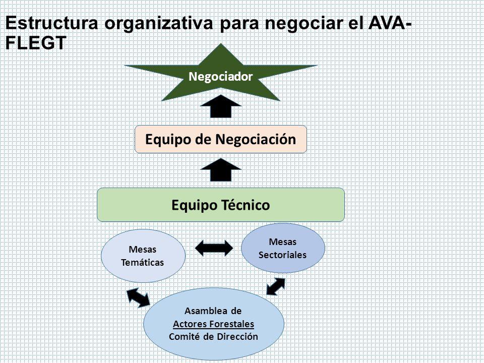 Estructura organizativa para negociar el AVA-FLEGT