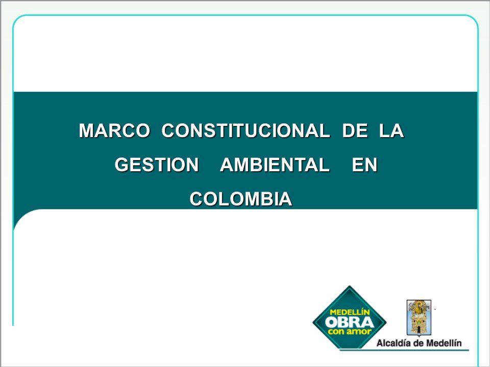 MARCO CONSTITUCIONAL DE LA
