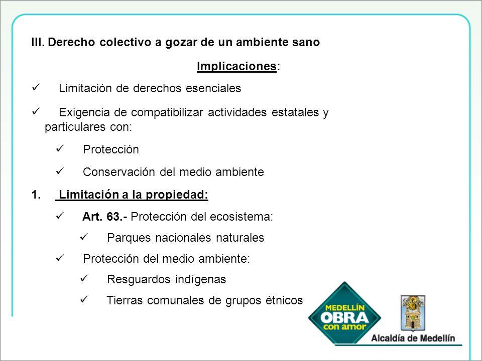 III. Derecho colectivo a gozar de un ambiente sano