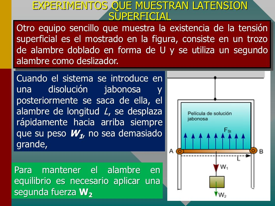 EXPERIMENTOS QUE MUESTRAN LATENSION SUPERFICIAL