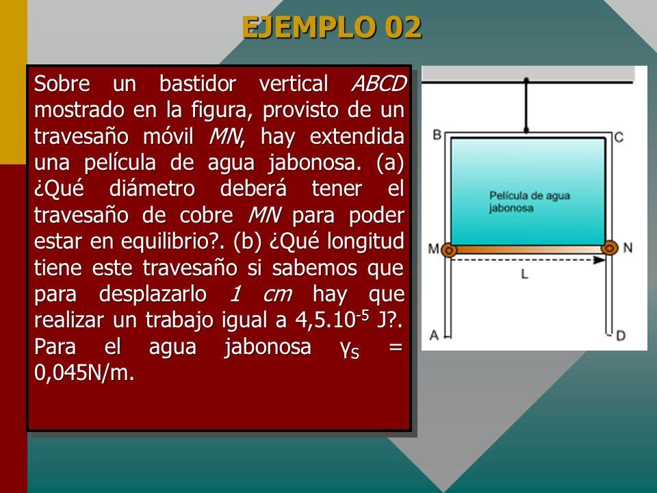 EJEMPLO 02