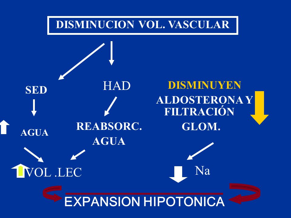 DISMINUCION VOL. VASCULAR
