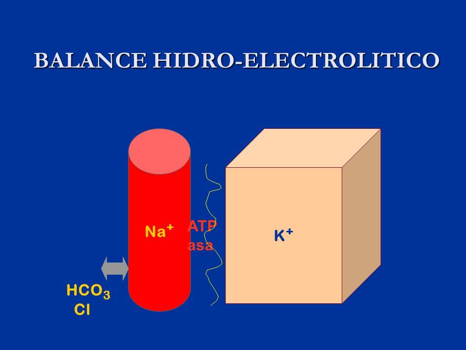 BALANCE HIDRO-ELECTROLITICO