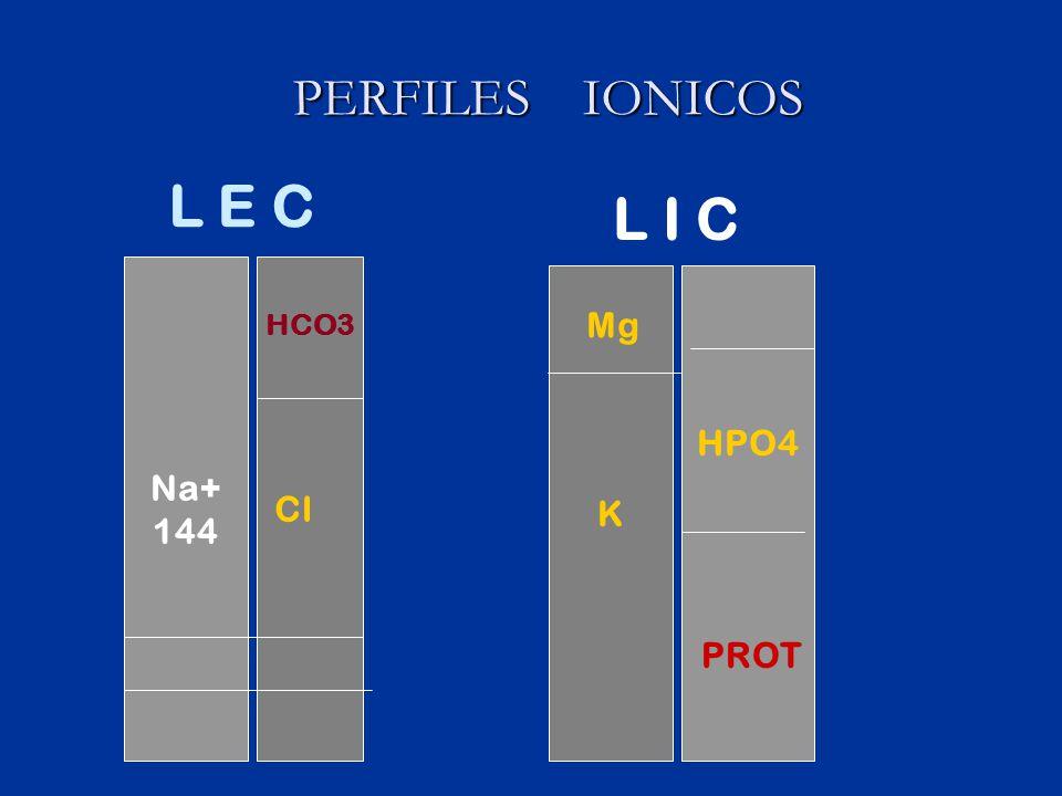 PERFILES IONICOS L E C L I C Na+ 144 K HCO3 Mg HPO4 Cl PROT