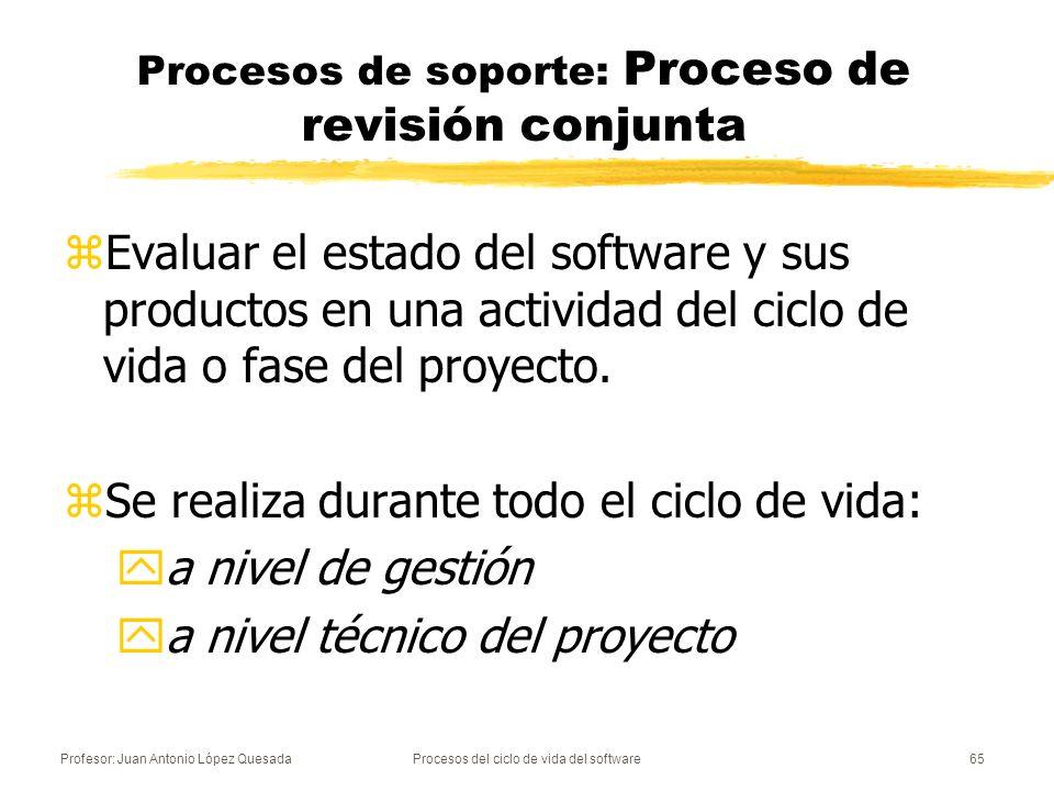Procesos de soporte: Proceso de revisión conjunta