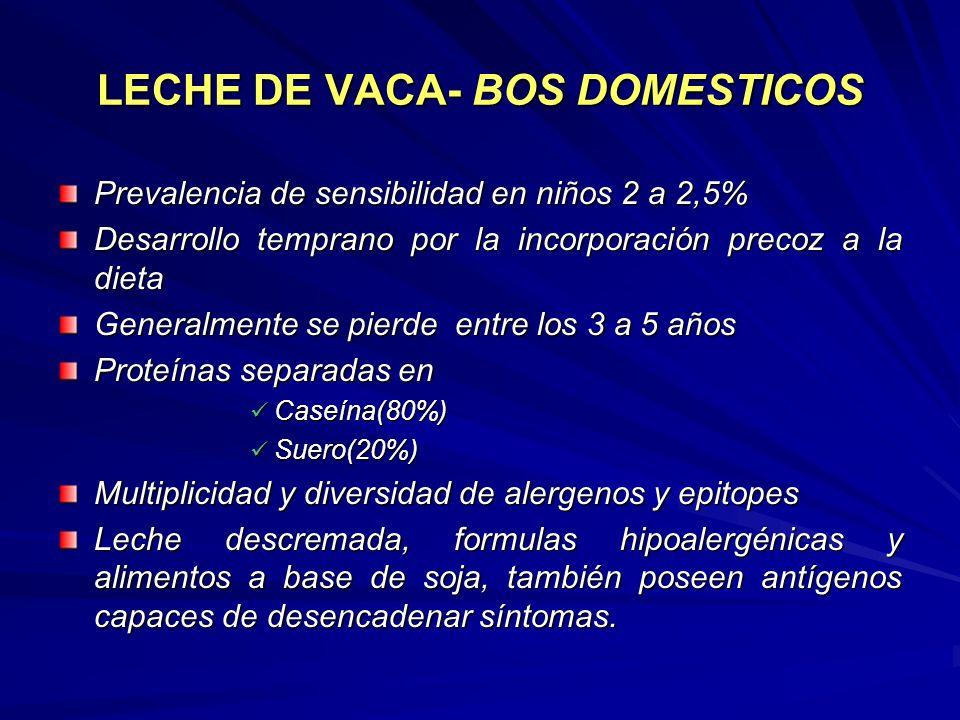 LECHE DE VACA- BOS DOMESTICOS