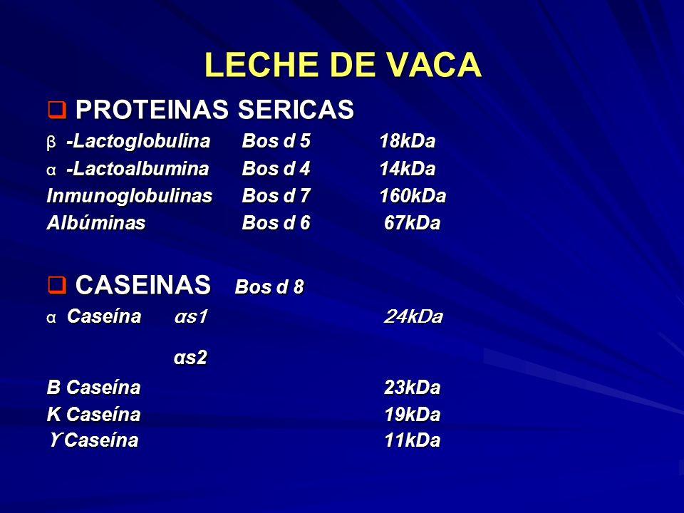 LECHE DE VACA αs2 PROTEINAS SERICAS CASEINAS Bos d 8