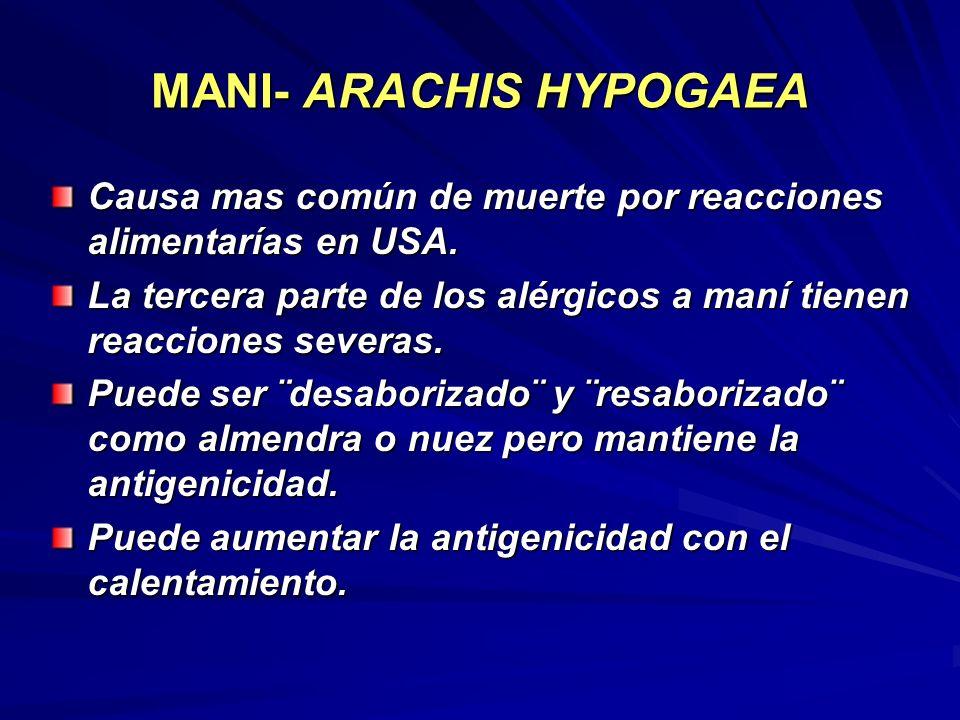 MANI- ARACHIS HYPOGAEA