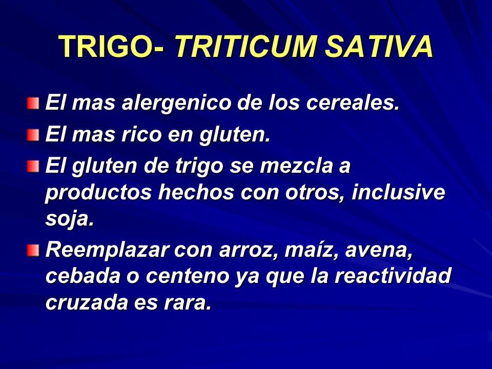 TRIGO- TRITICUM SATIVA