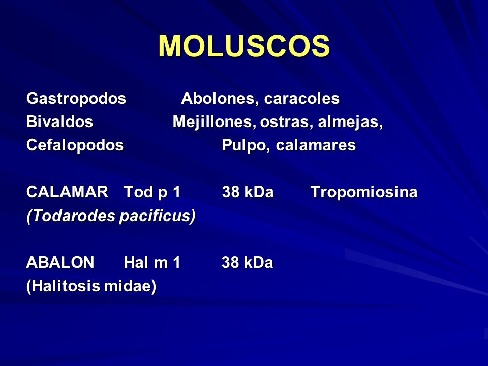MOLUSCOS Gastropodos Abolones, caracoles