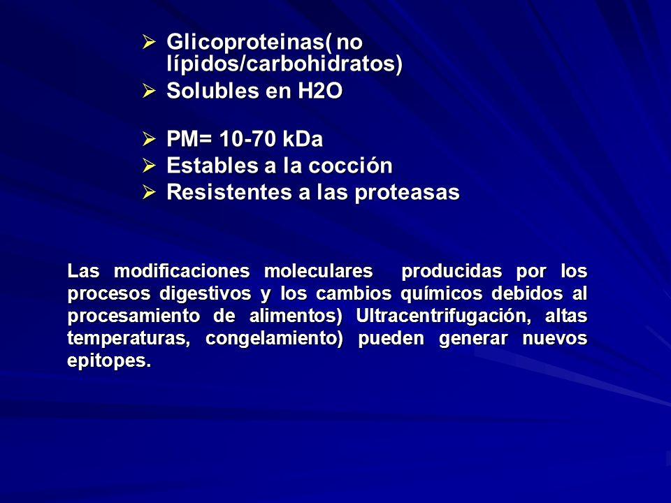 Glicoproteinas( no lípidos/carbohidratos) Solubles en H2O