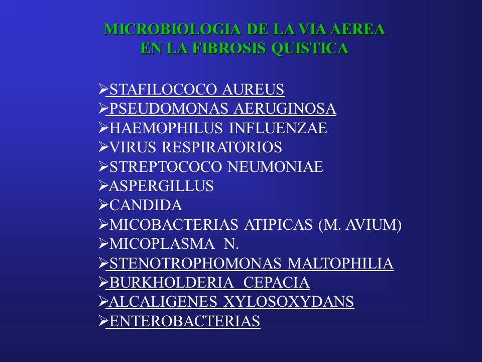 MICROBIOLOGIA DE LA VIA AEREA EN LA FIBROSIS QUISTICA